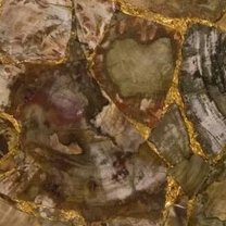 Petrified wood brown with gold